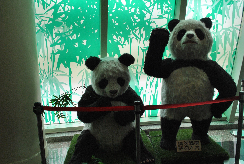The Most Awesome Travel Moment 5 Melihat Kungfu Panda Sepak
